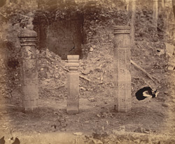 Pillars dug up from ruined temple, Turturia, Bilaspur District